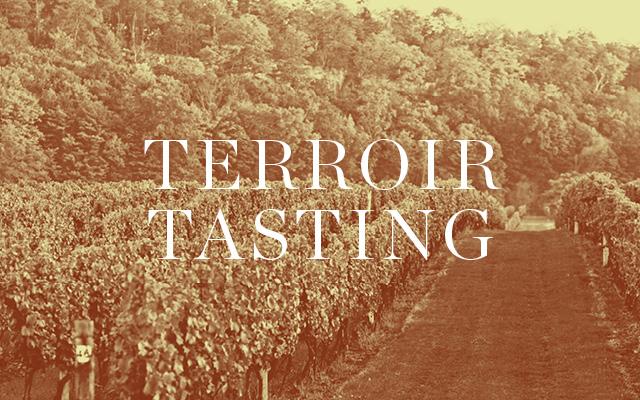 Terroir Tasting